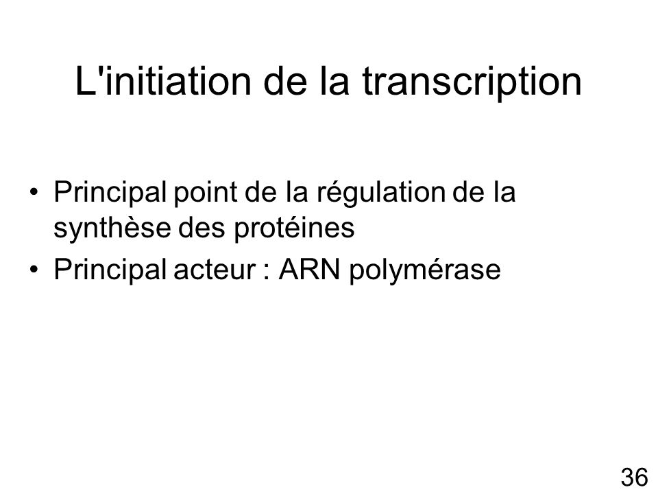 L initiation de la transcription