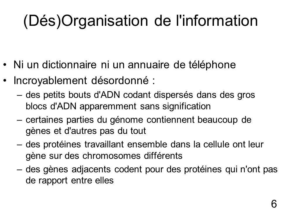 (Dés)Organisation de l information