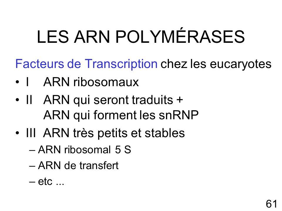 LES ARN POLYMÉRASES Facteurs de Transcription chez les eucaryotes