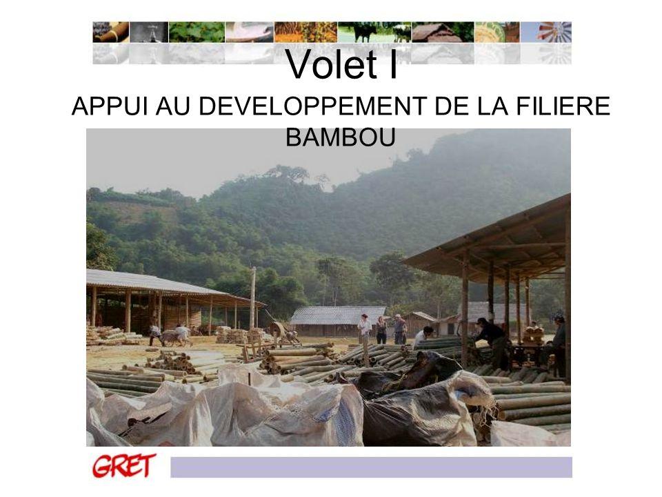 APPUI AU DEVELOPPEMENT DE LA FILIERE BAMBOU