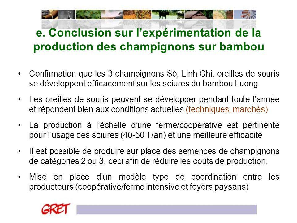 e. Conclusion sur l'expérimentation de la production des champignons sur bambou