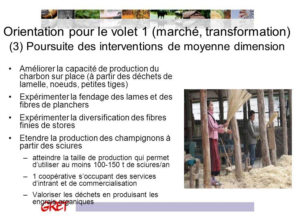 Orientation pour le volet 1 (marché, transformation) (3) Poursuite des interventions de moyenne dimension