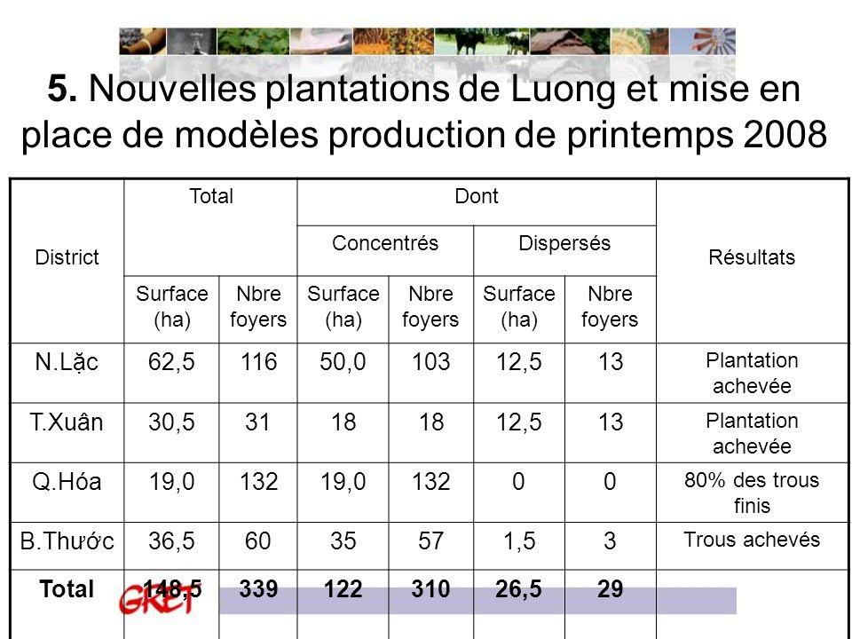 5. Nouvelles plantations de Luong et mise en place de modèles production de printemps 2008