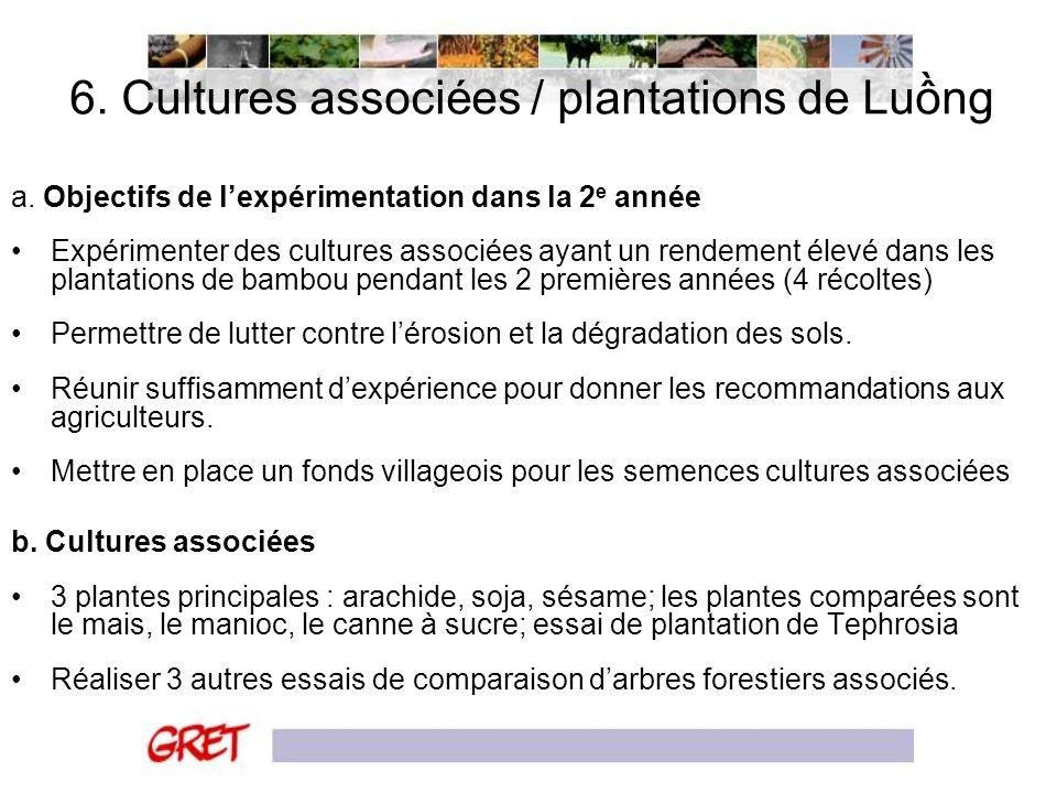 6. Cultures associées / plantations de Luồng