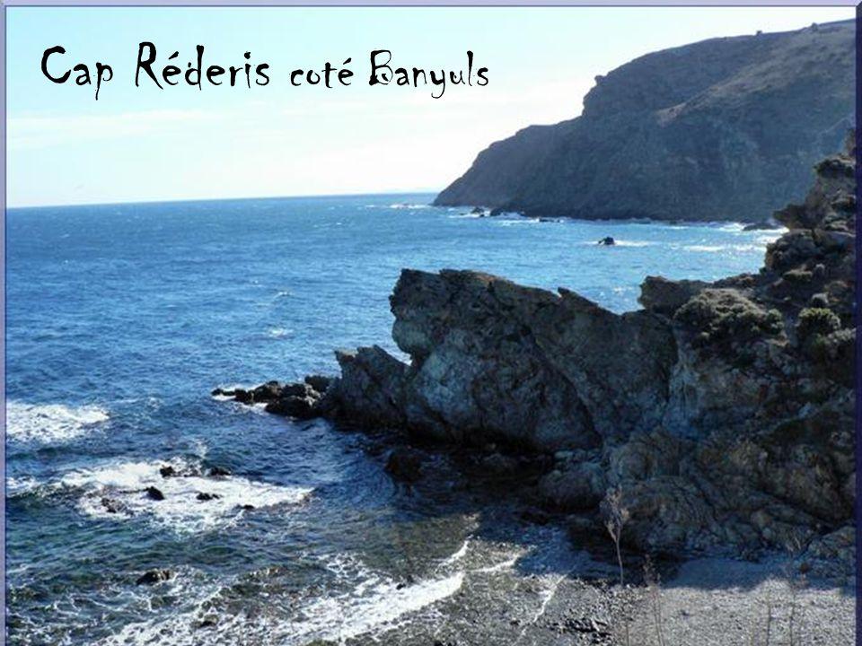 Cap Réderis coté Banyuls