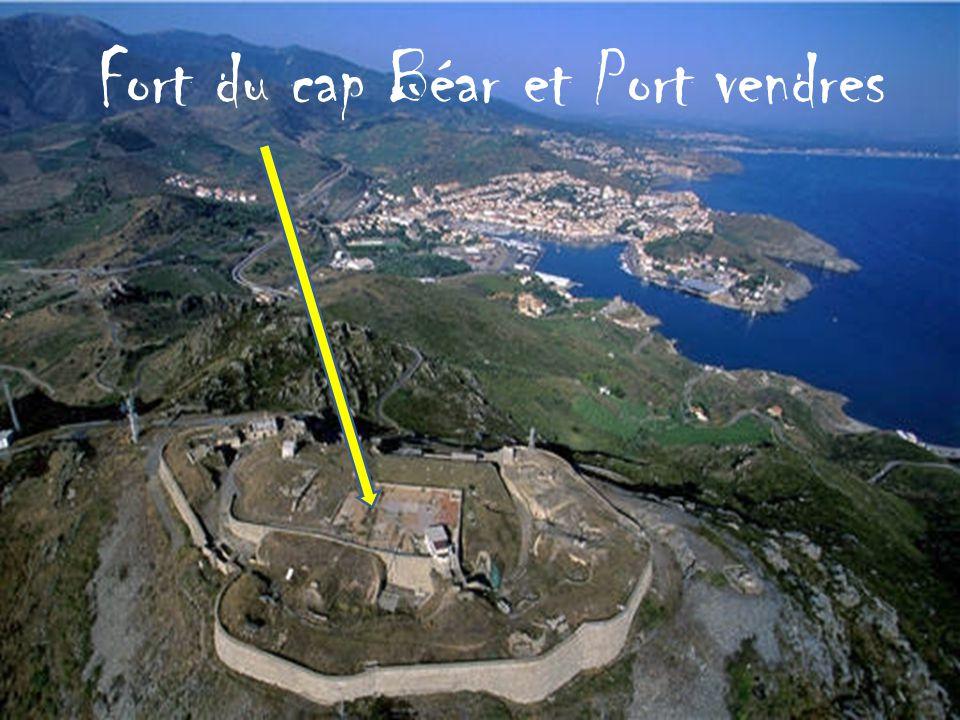 Fort du cap Béar et Port vendres