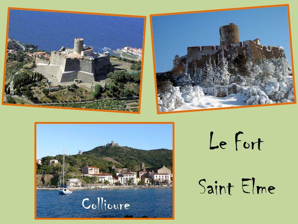 Le Fort Saint Elme Collioure