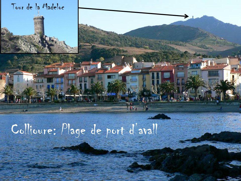 Collioure: Plage de port d'avall