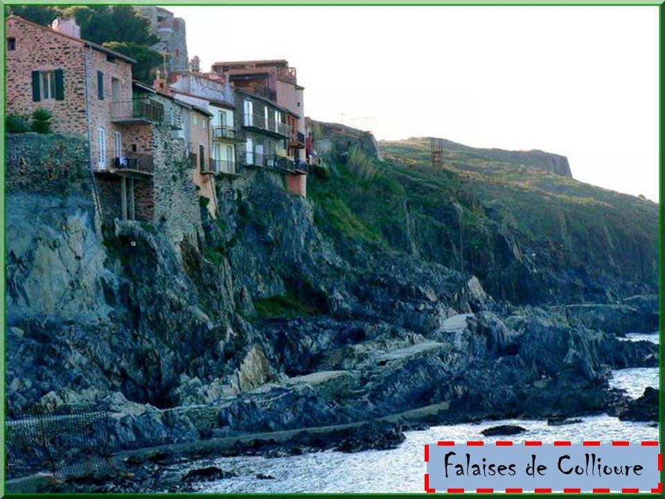Falaises de Collioure