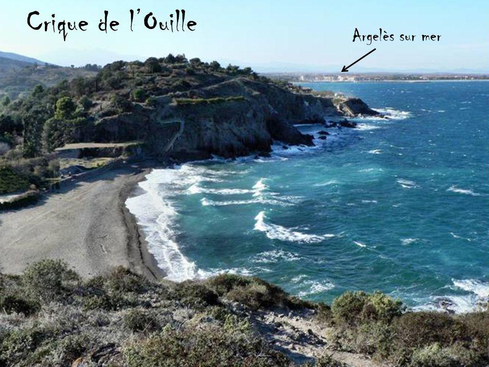 Crique de l'Ouille Argelès sur mer