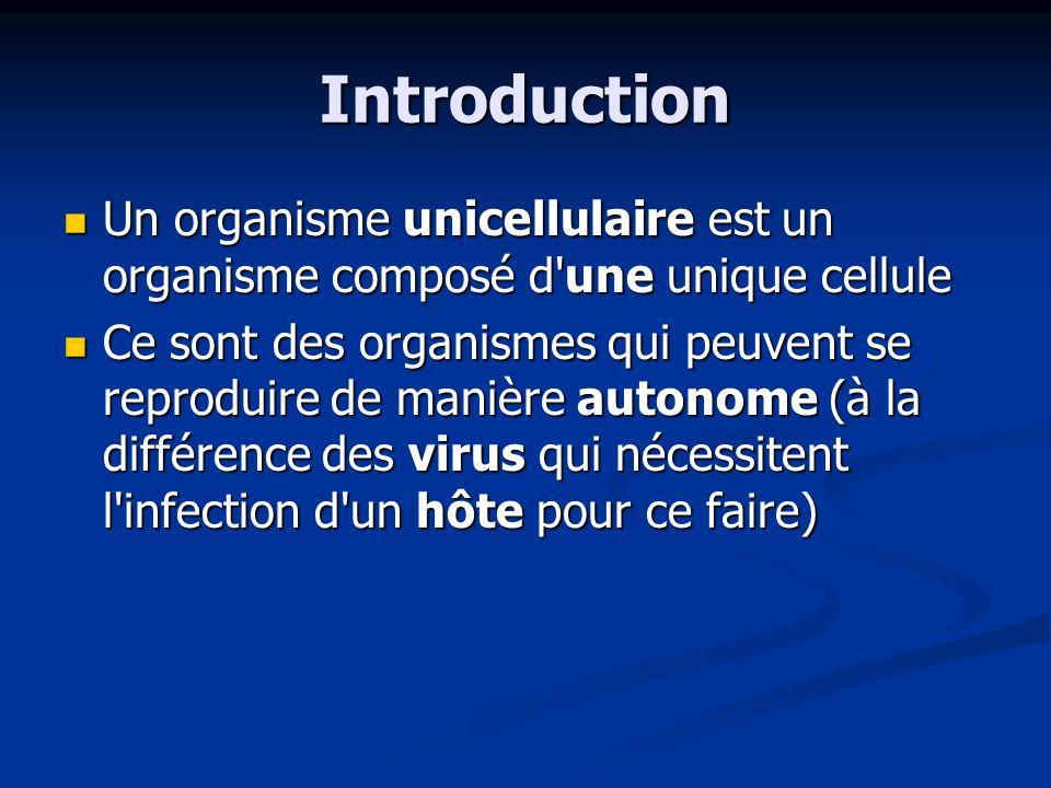 Introduction Un organisme unicellulaire est un organisme composé d une unique cellule.