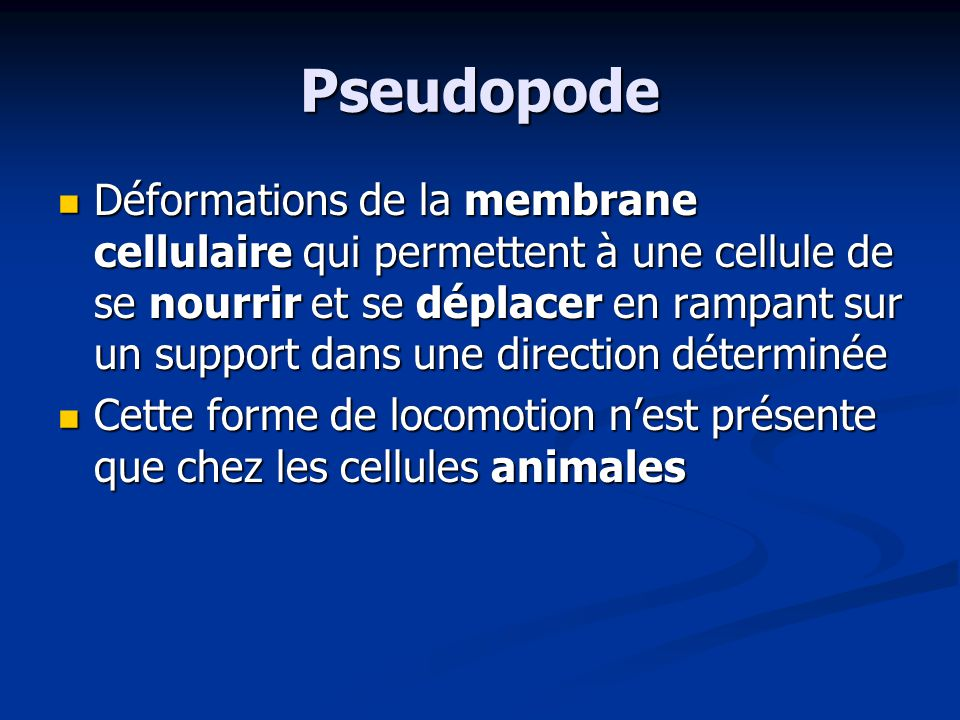 Pseudopode
