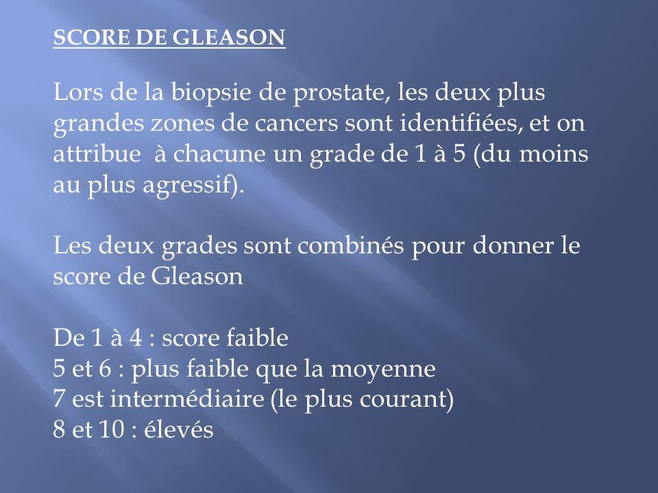 Les deux grades sont combinés pour donner le score de Gleason