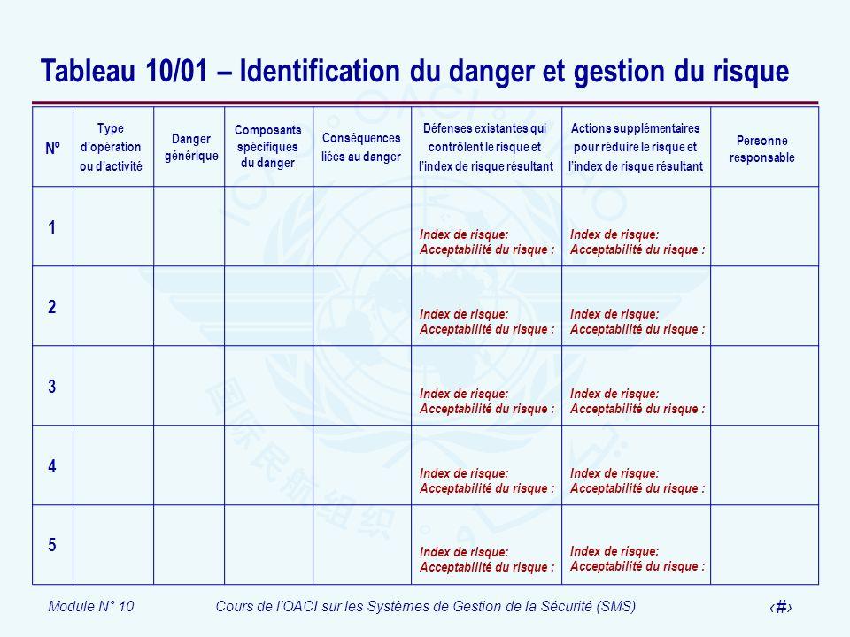 Tableau 10/01 – Identification du danger et gestion du risque