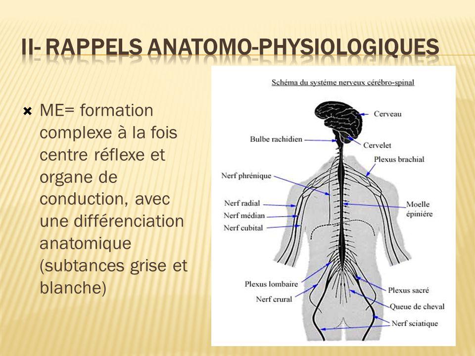 II- Rappels anatomo-physiologiques