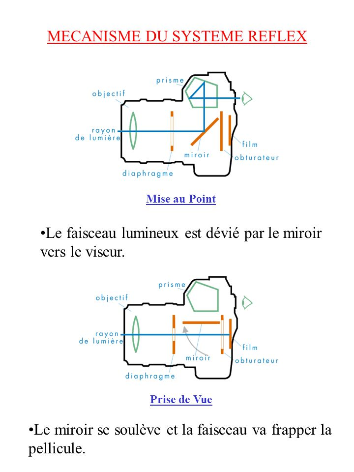 MECANISME DU SYSTEME REFLEX
