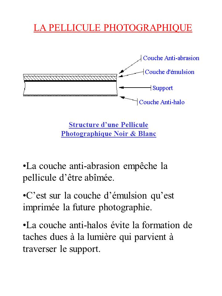 Structure d'une Pellicule Photographique Noir & Blanc