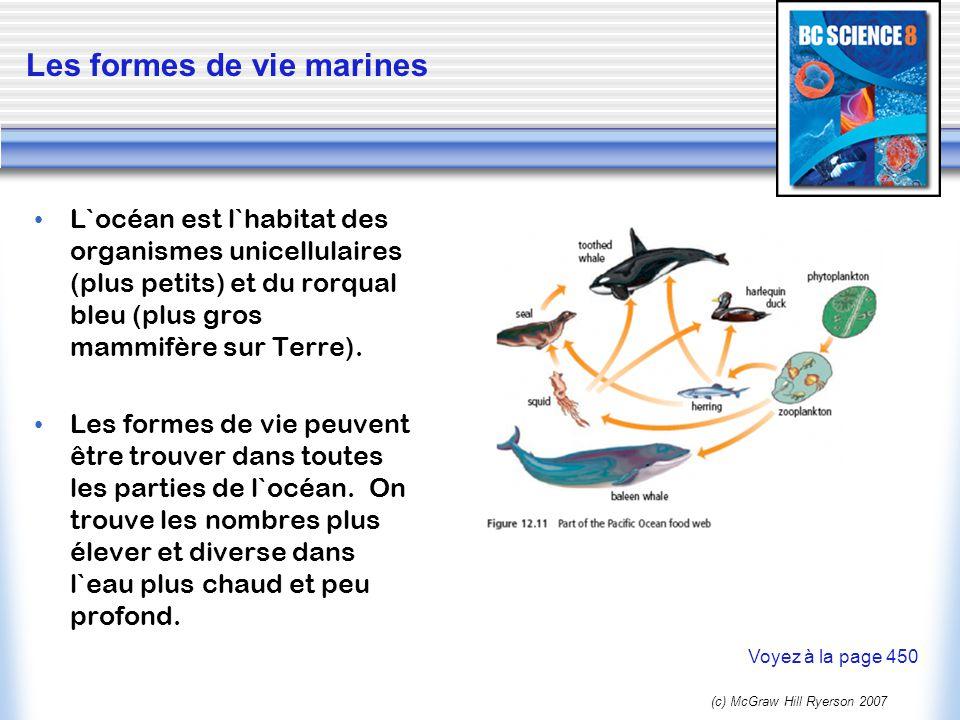 Les formes de vie marines