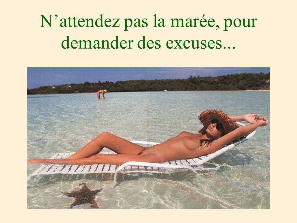 N'attendez pas la marée, pour demander des excuses...