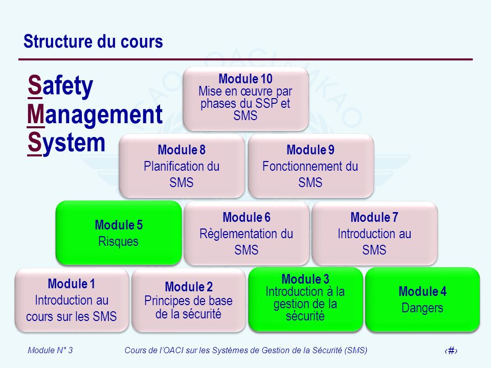 Safety Management System Structure du cours Module 1