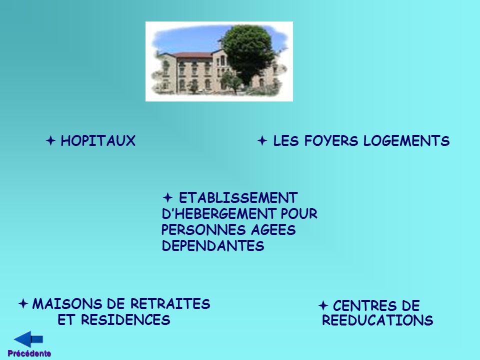  ETABLISSEMENT D'HEBERGEMENT POUR PERSONNES AGEES DEPENDANTES