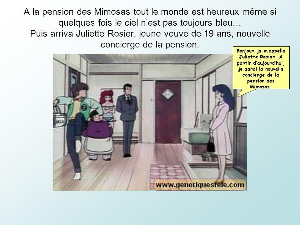 A la pension des Mimosas tout le monde est heureux même si quelques fois le ciel n'est pas toujours bleu… Puis arriva Juliette Rosier, jeune veuve de 19 ans, nouvelle concierge de la pension.