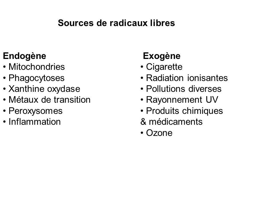 Sources de radicaux libres