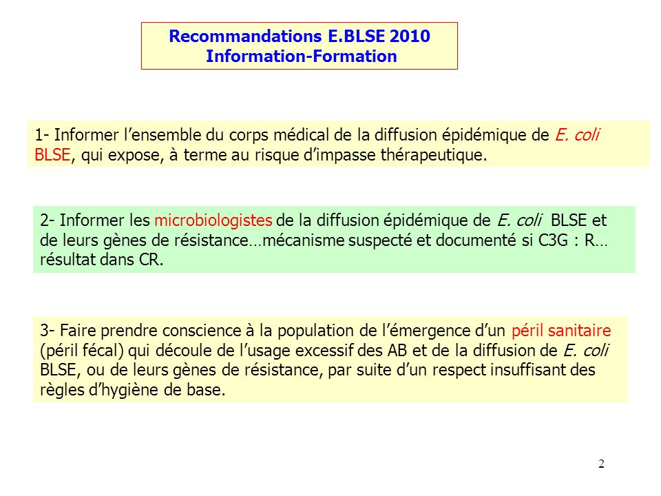 Recommandations E.BLSE 2010 Information-Formation