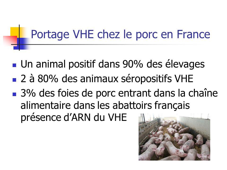 Portage VHE chez le porc en France