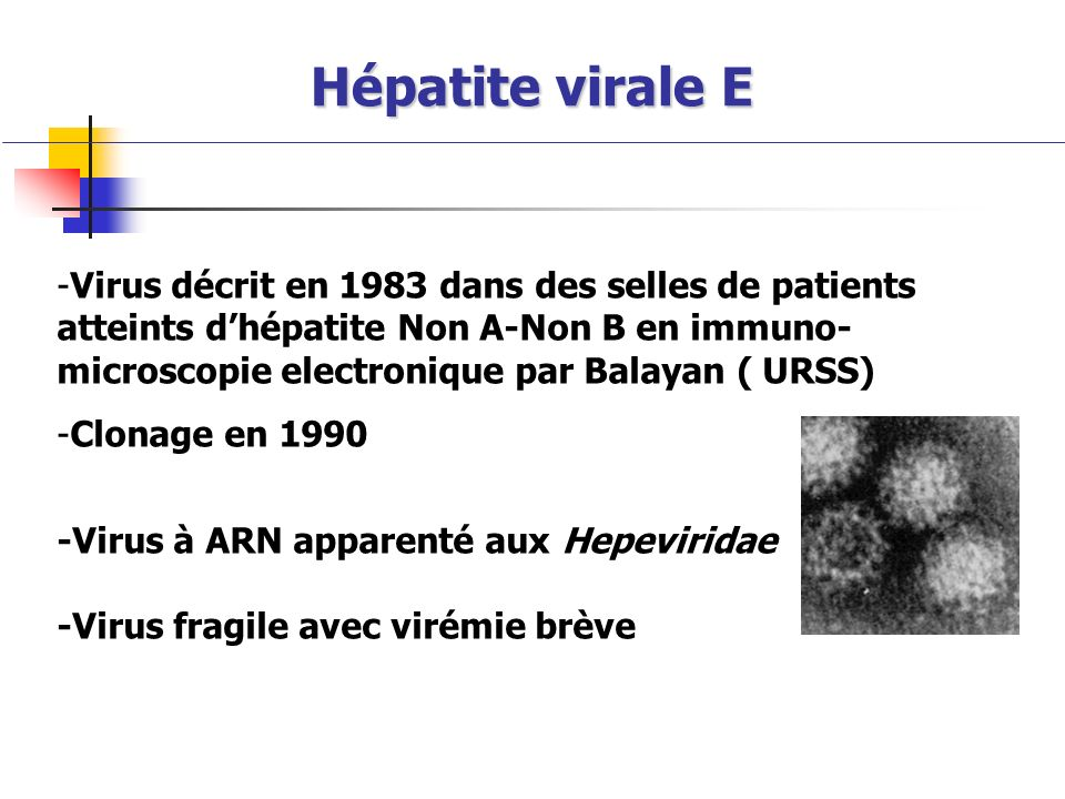 Hépatite virale E