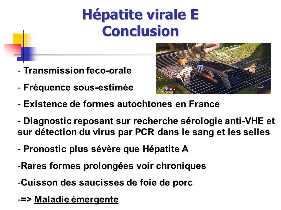 Hépatite virale E Conclusion