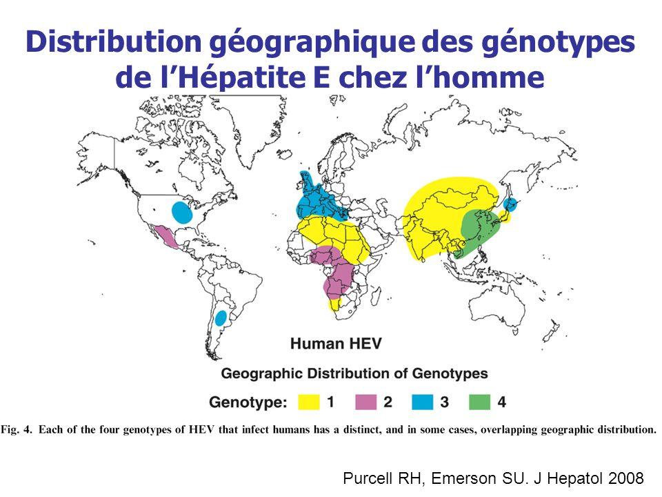 Distribution géographique des génotypes de l'Hépatite E chez l'homme