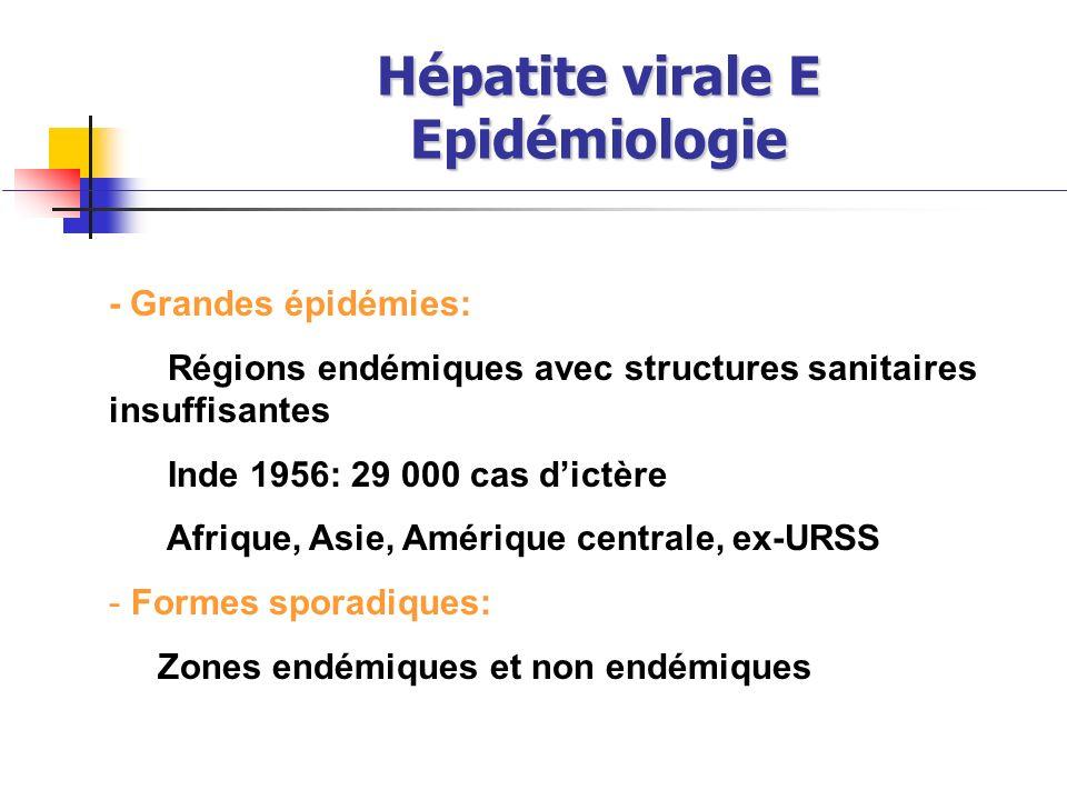 Hépatite virale E Epidémiologie