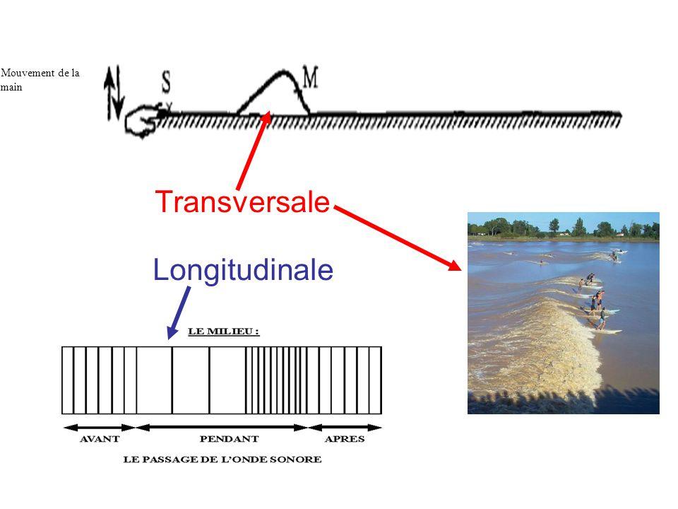 Transversale Longitudinale