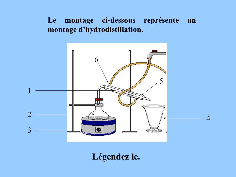 Le montage ci-dessous représente un montage d'hydrodistillation.