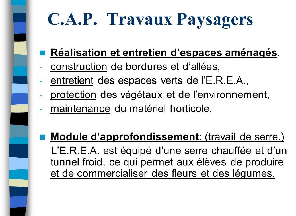 C.A.P. Travaux Paysagers Réalisation et entretien d'espaces aménagés.