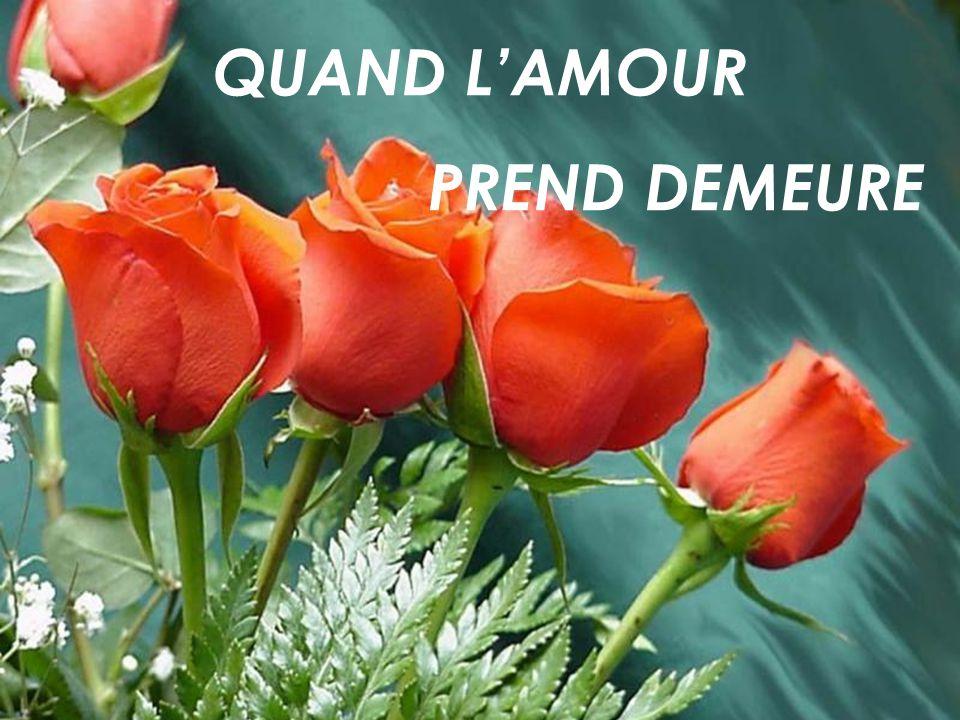 QUAND L'AMOUR PREND DEMEURE