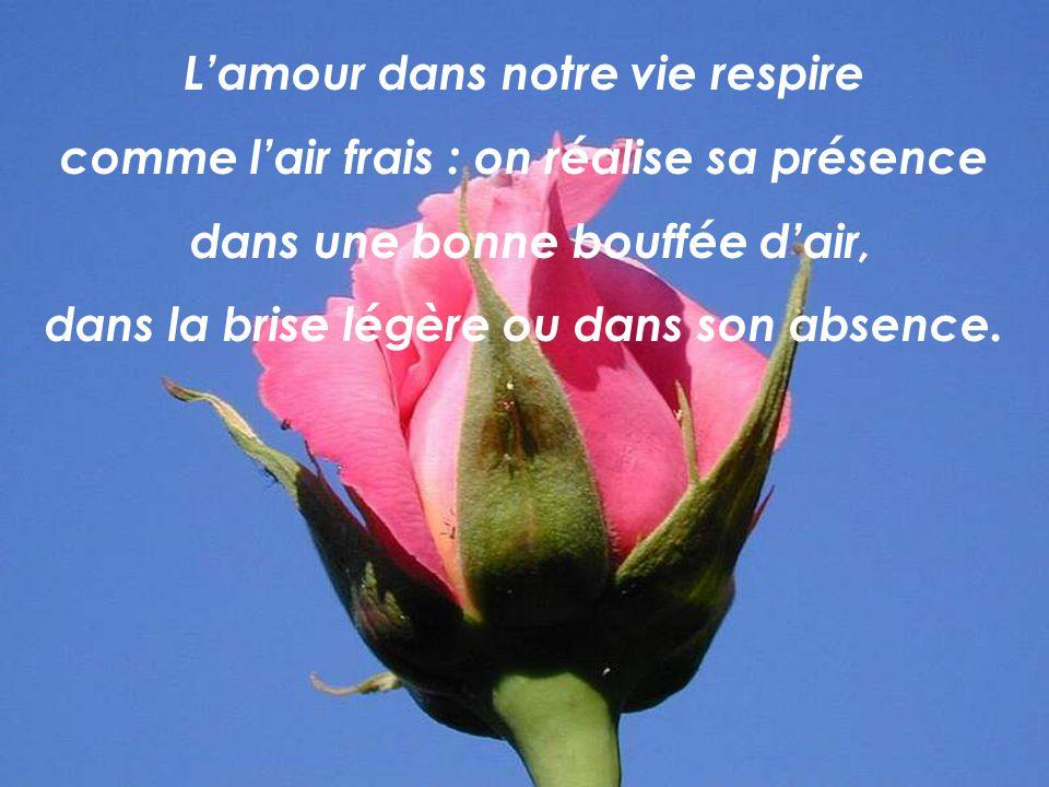 L'amour dans notre vie respire