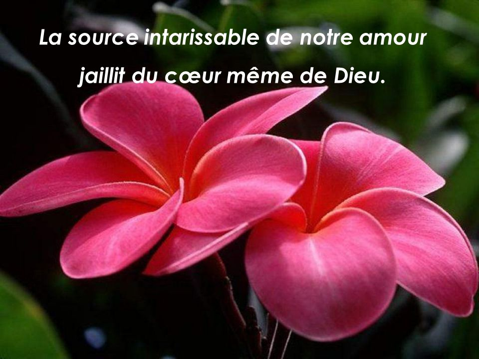 La source intarissable de notre amour jaillit du cœur même de Dieu.