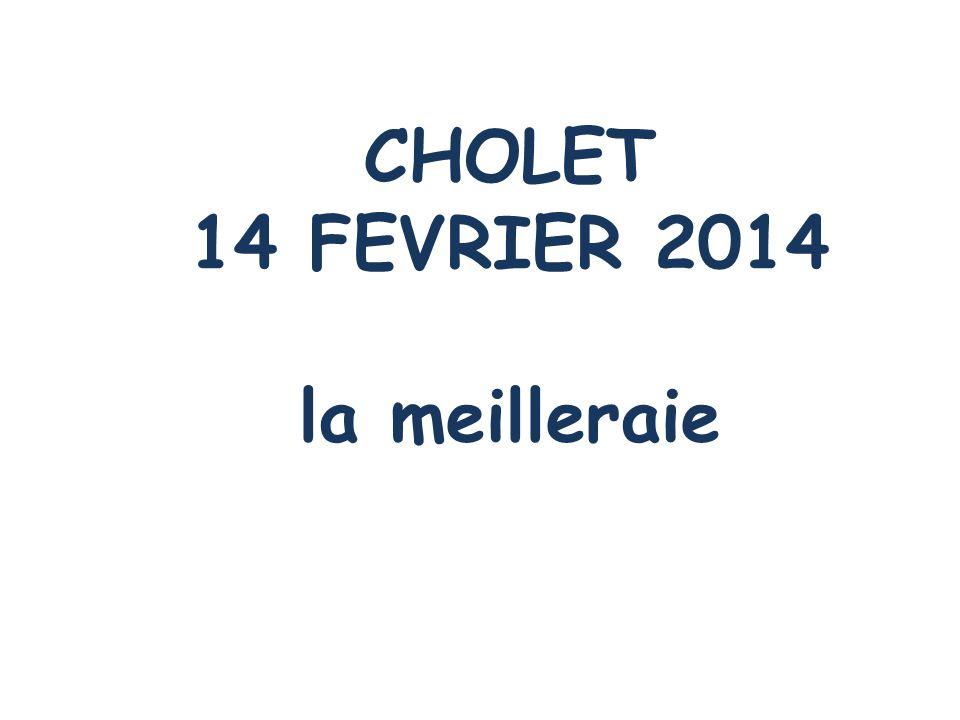 CHOLET 14 FEVRIER 2014 la meilleraie