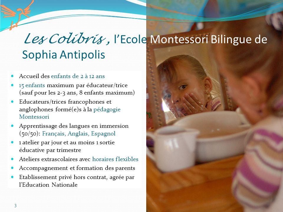 Les Colibris , l'Ecole Montessori Bilingue de Sophia Antipolis
