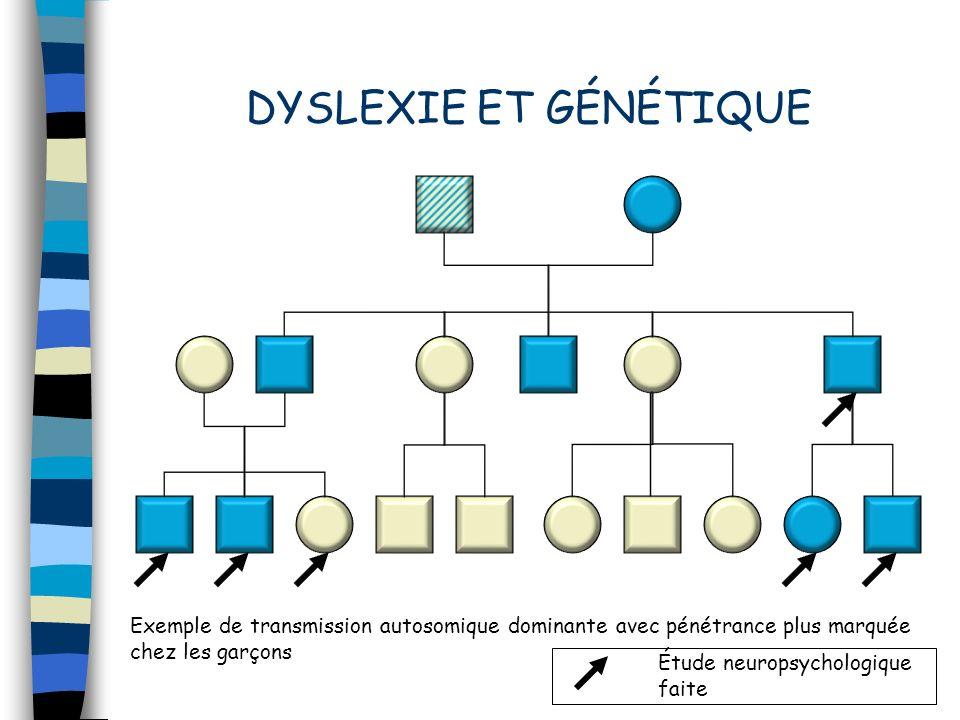 DYSLEXIE ET GÉNÉTIQUE Exemple de transmission autosomique dominante avec pénétrance plus marquée chez les garçons.