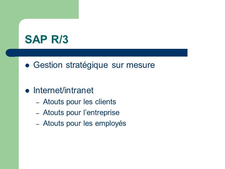 SAP R/3 Gestion stratégique sur mesure Internet/intranet