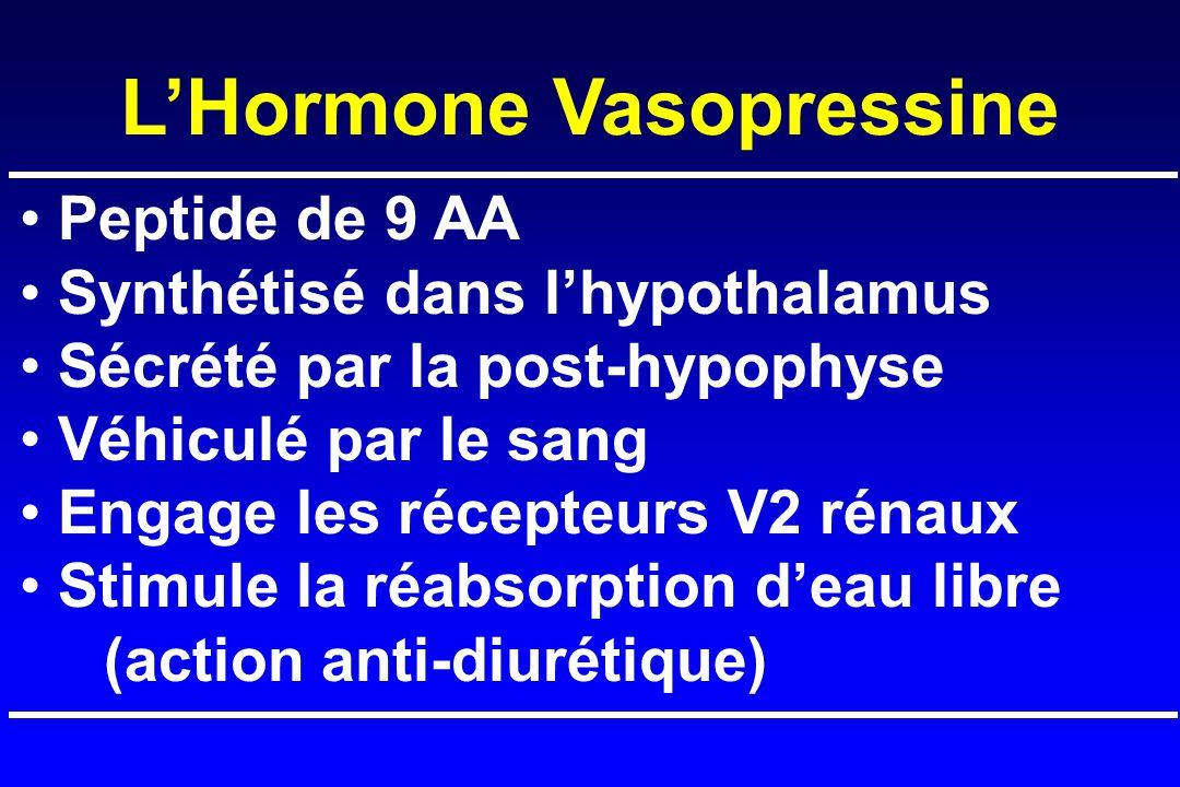 L'Hormone Vasopressine