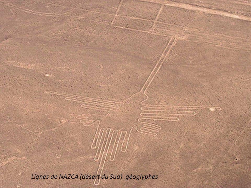 Lignes de NAZCA (désert du Sud) géoglyphes