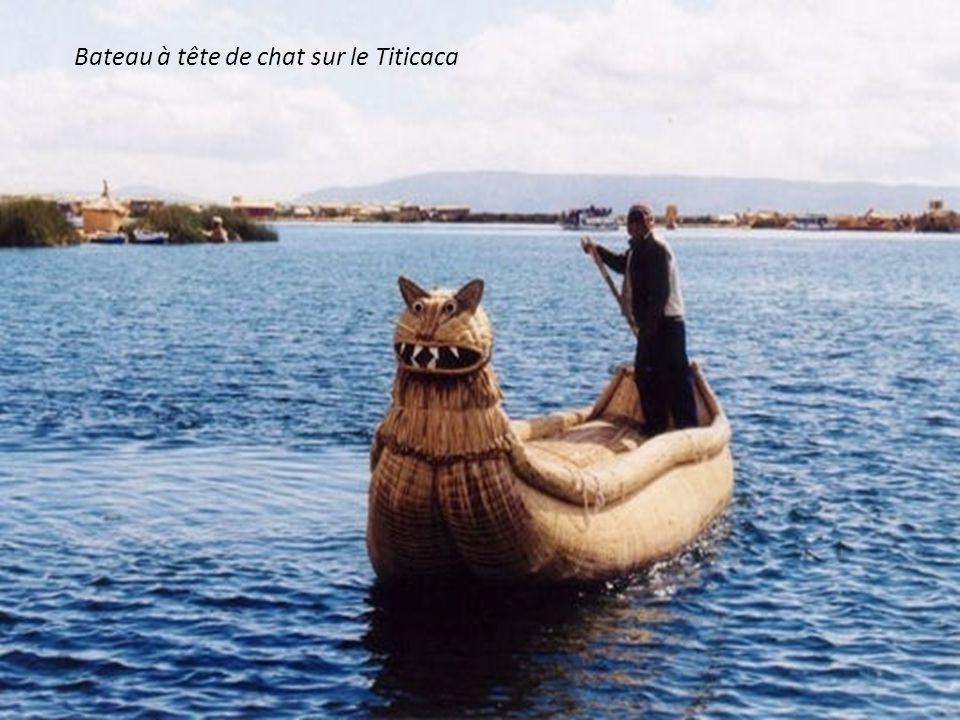 Bateau à tête de chat sur le Titicaca