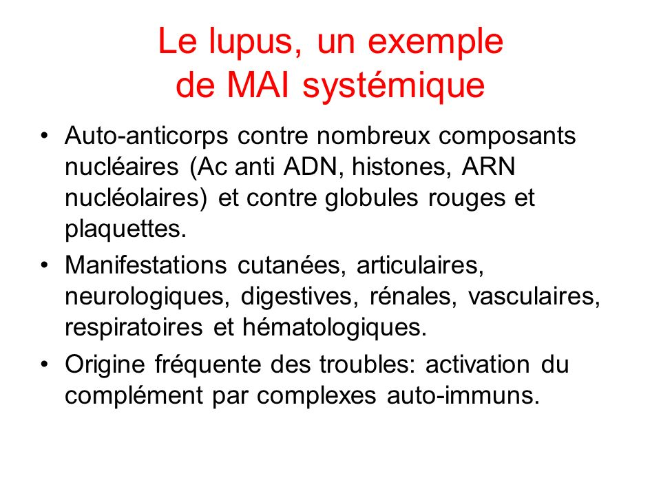 Le lupus, un exemple de MAI systémique