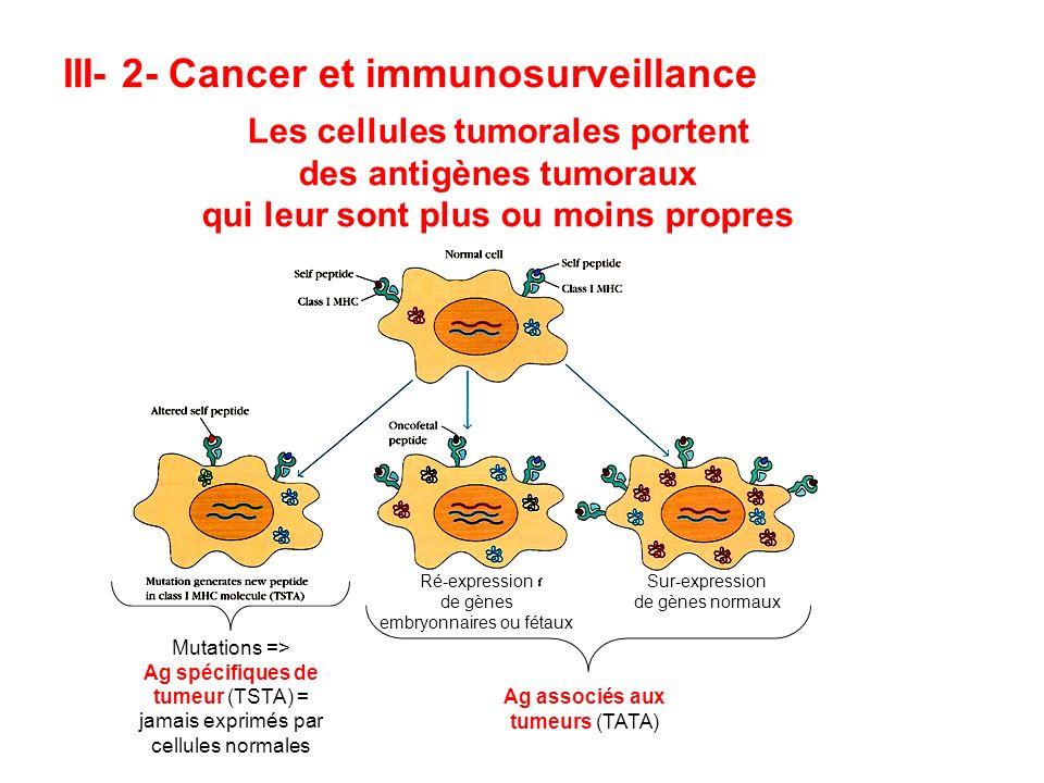 III- 2- Cancer et immunosurveillance