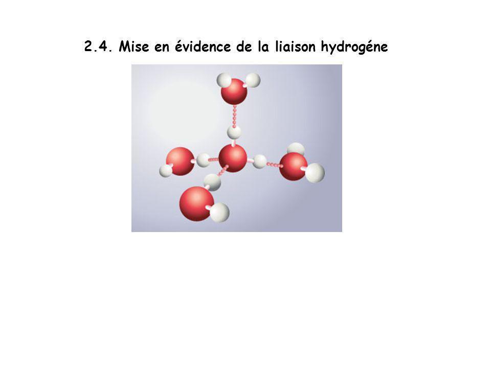 2.4. Mise en évidence de la liaison hydrogéne