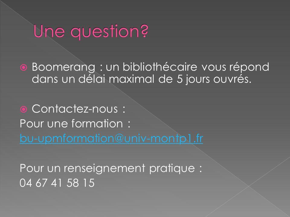 Une question Boomerang : un bibliothécaire vous répond dans un délai maximal de 5 jours ouvrés. Contactez-nous :